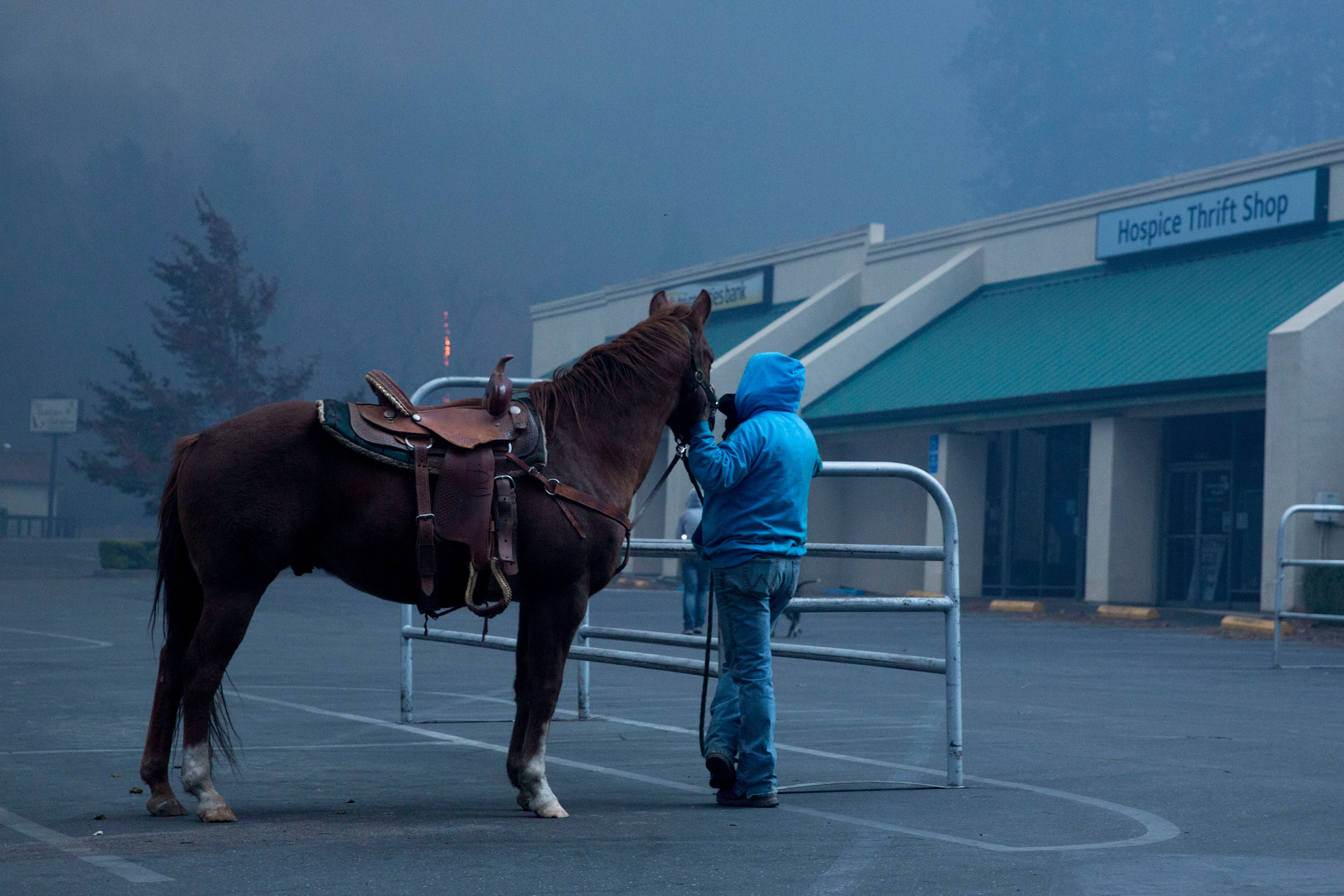 Hillery Johnson stands with her horse Augie, after she lost everything except the clothes on her back and her horse, watches as the Camp Fire burns out of control through Paradise, Calif. on Nov. 8.