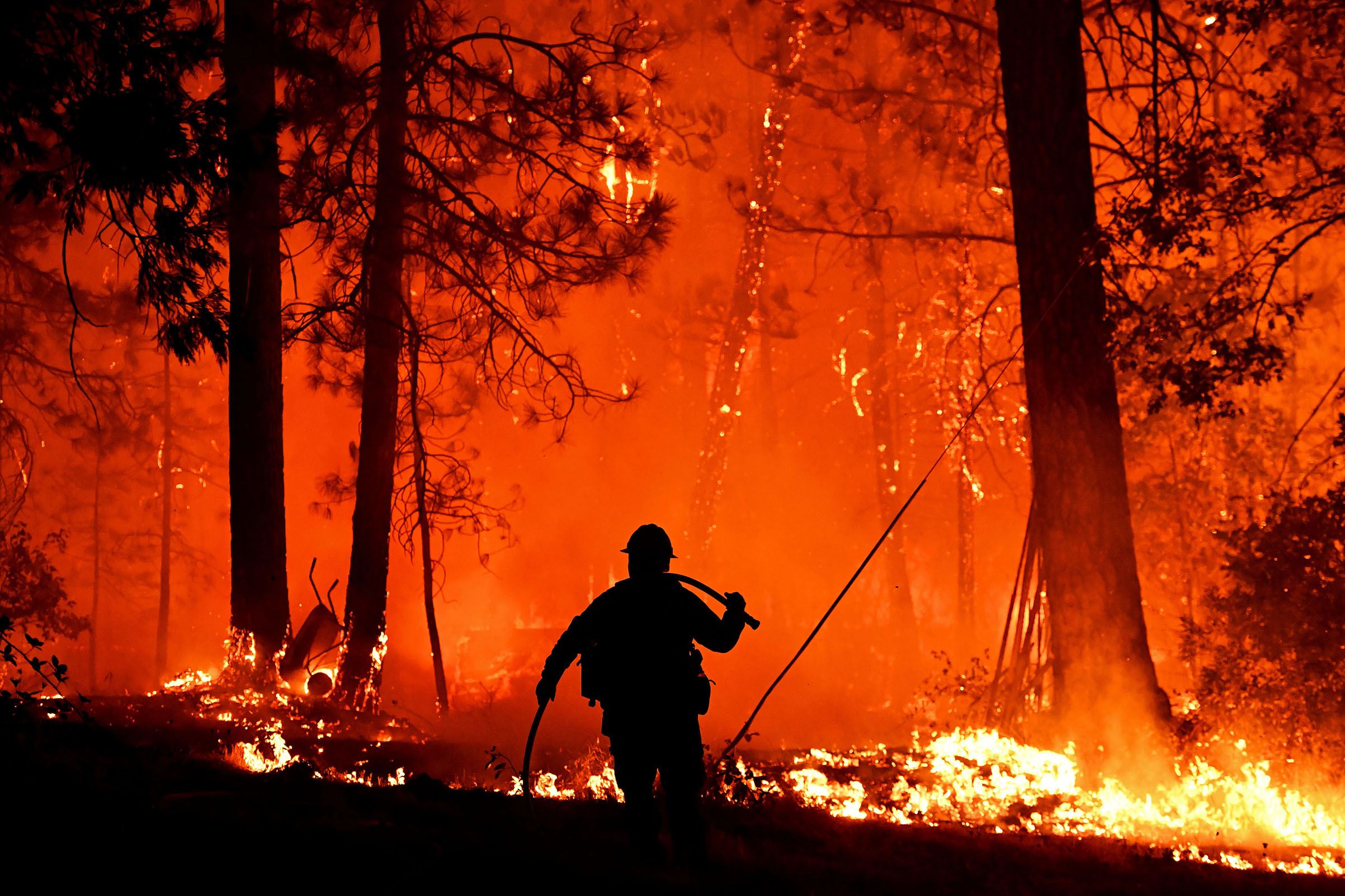 Firefighters struggle to contain backfire in the Pollard Flat area of California in the Shasta Trinity National Forest on Sept 6, 2018.