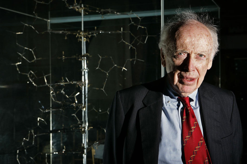 James Watson, who discovered the structure of DNA more than 50 years ago, stands next to the original DNA model  on May 20, 2005.