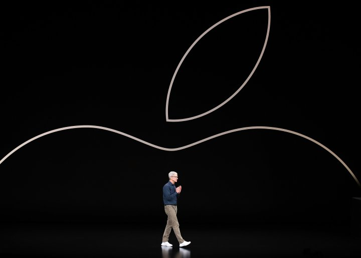 Tim Cook chief executive officer of Apple