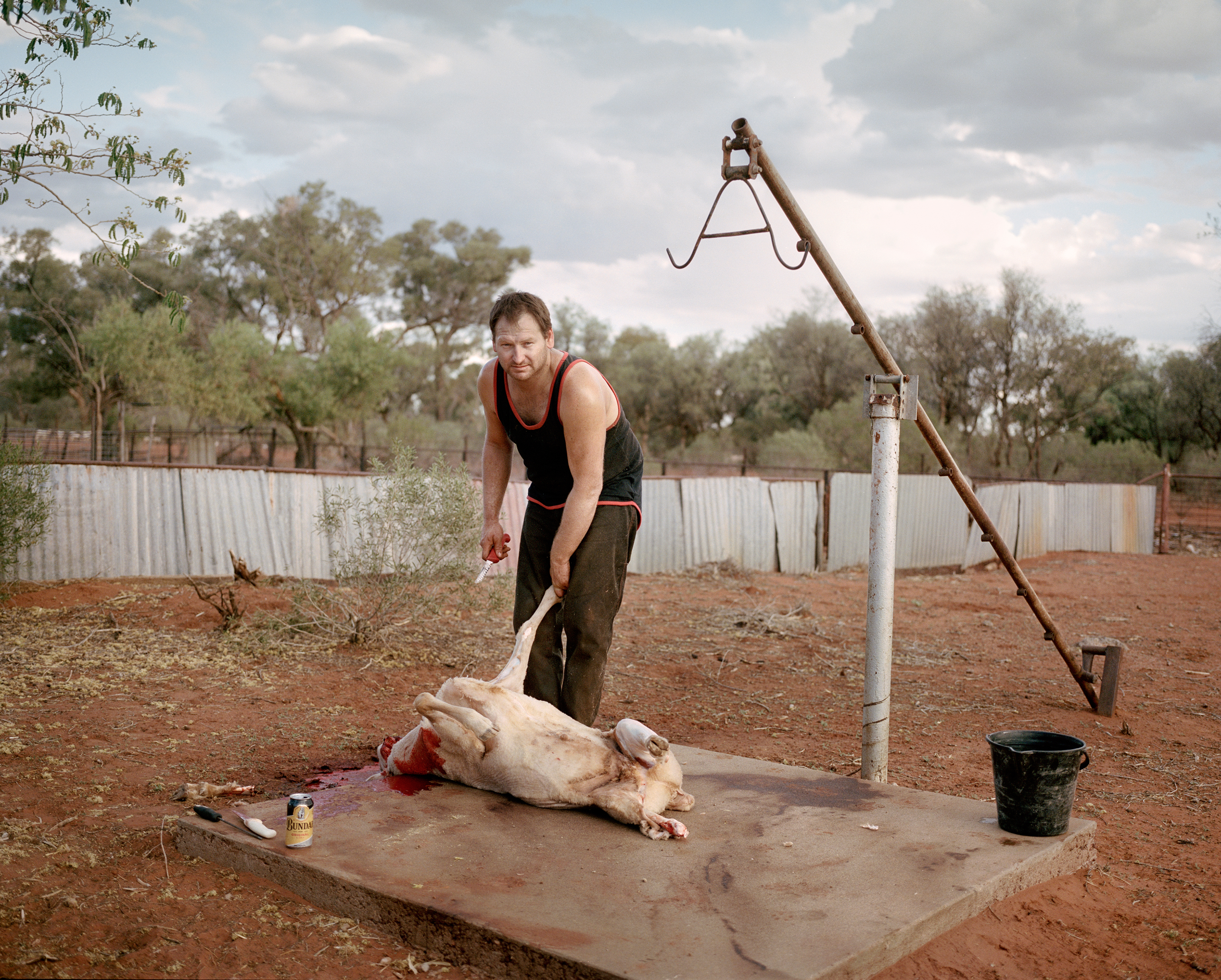 Contract shearer James Tubman slaughters a sheep for food on Turn Turn Station, near Eulo, in Queensland in November.