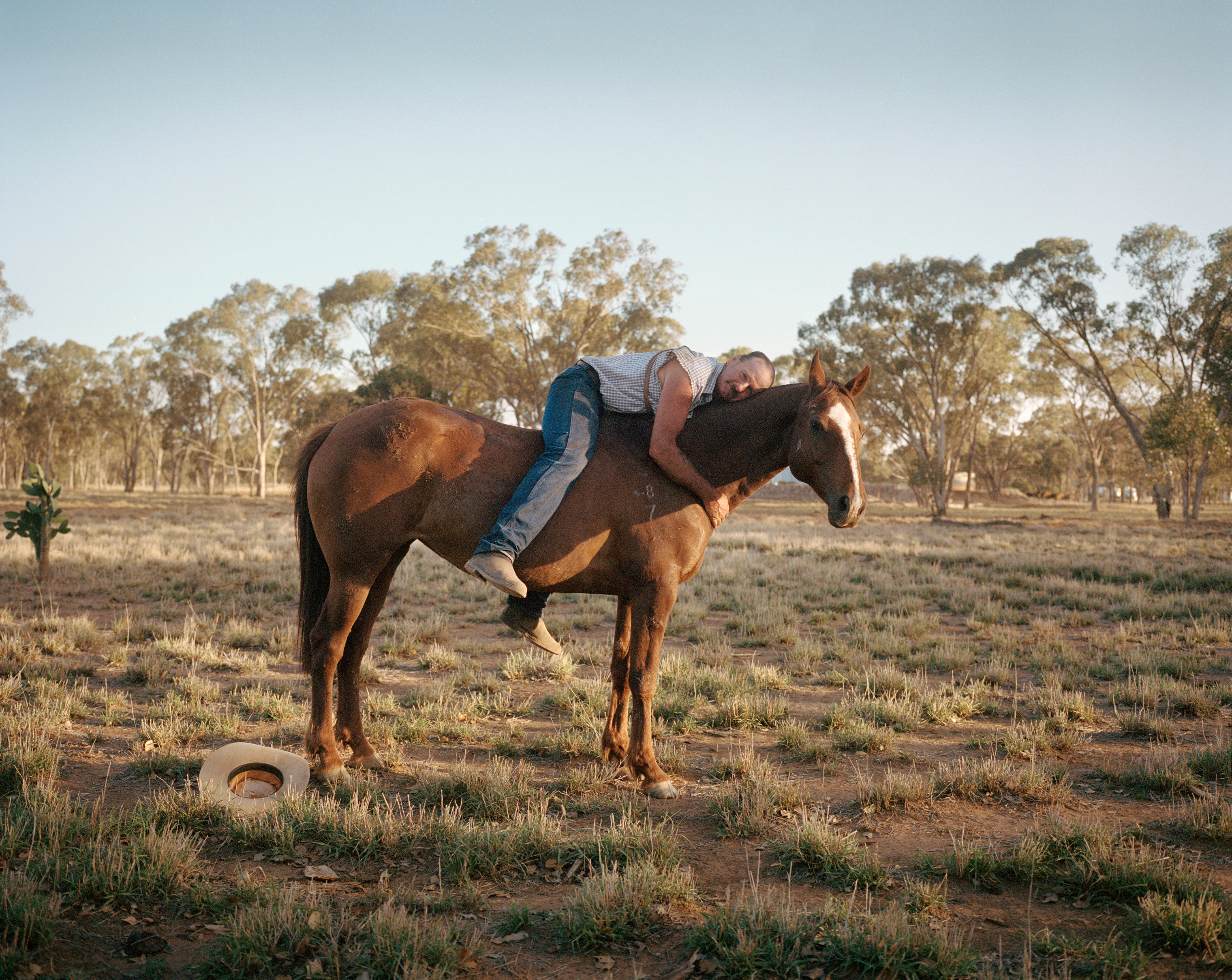 "Billy Skinner, a ""drover"" who herds livestock for a living, on the Dulbydilla stock route in Queensland in November 2018. Skinner was driving cattle trucked from a drought-affected area near the town of Tambo to a place they could feed"