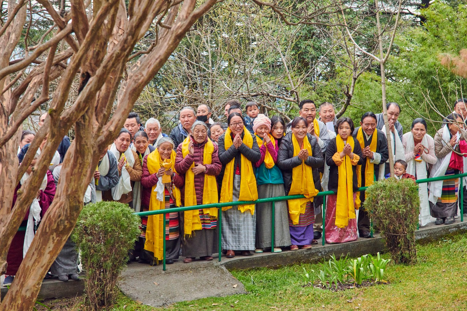 Around 300 devotees line up early at Tsuglagkhang temple to offer the Dalai Lama traditional khata scarves and to receive his blessing.