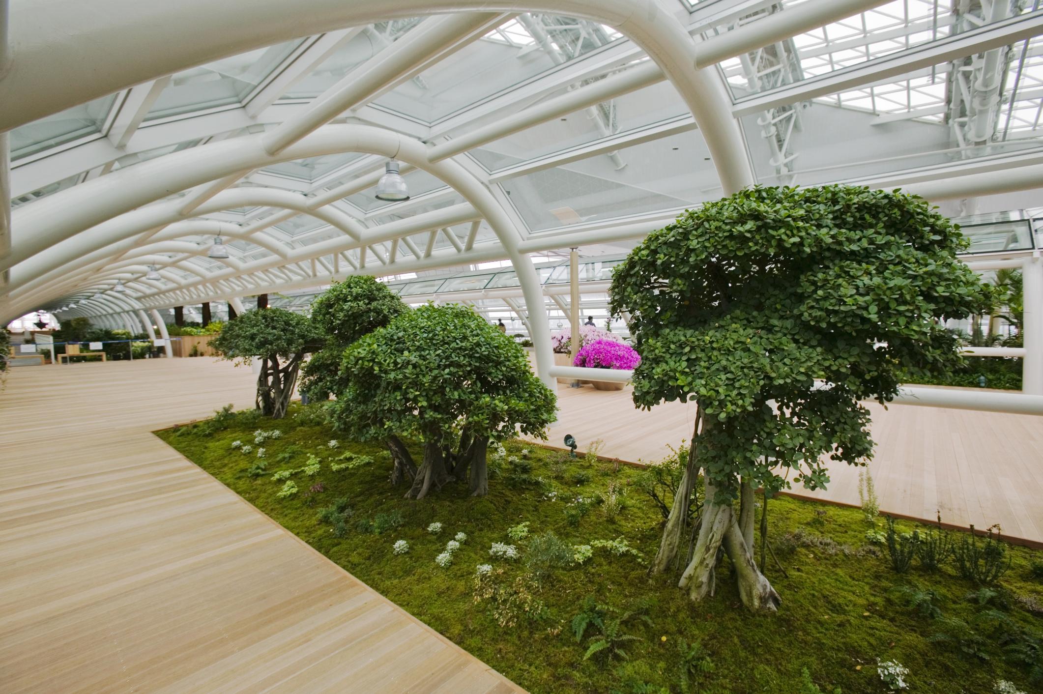 Indoor Garden at the Incheon International Airport.