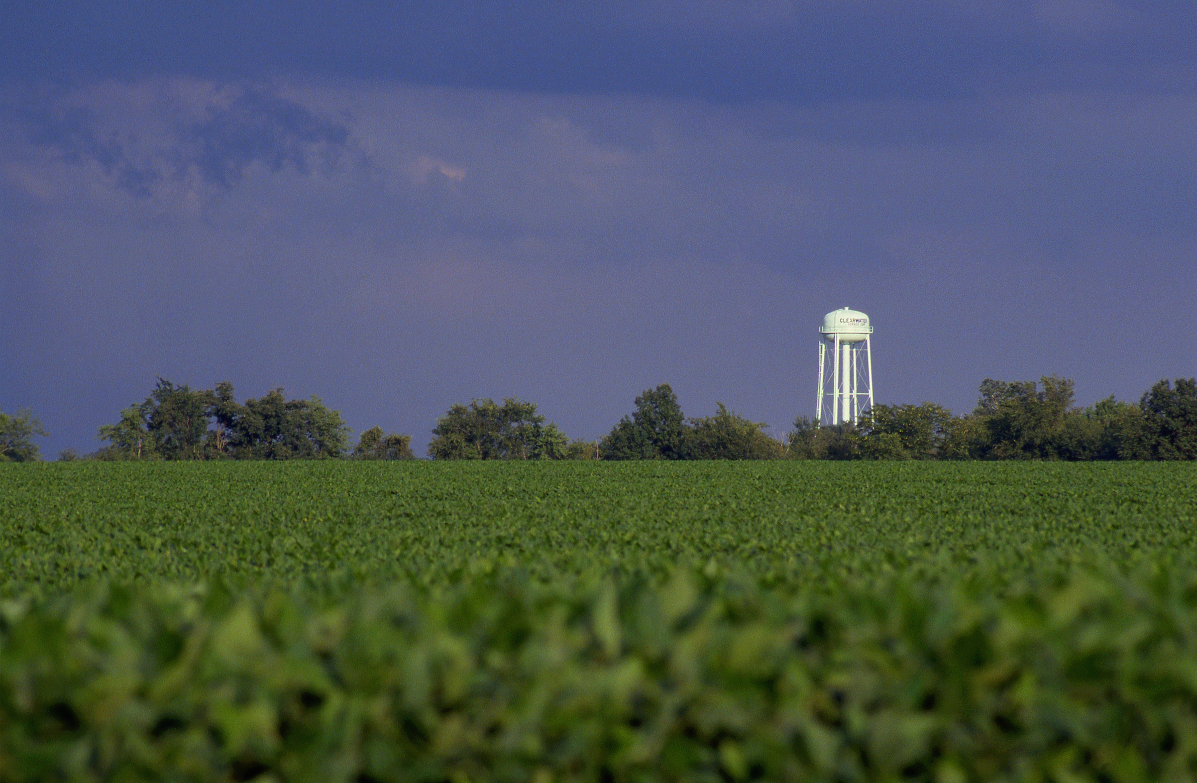 Soybean field and Water tower, Illinois.