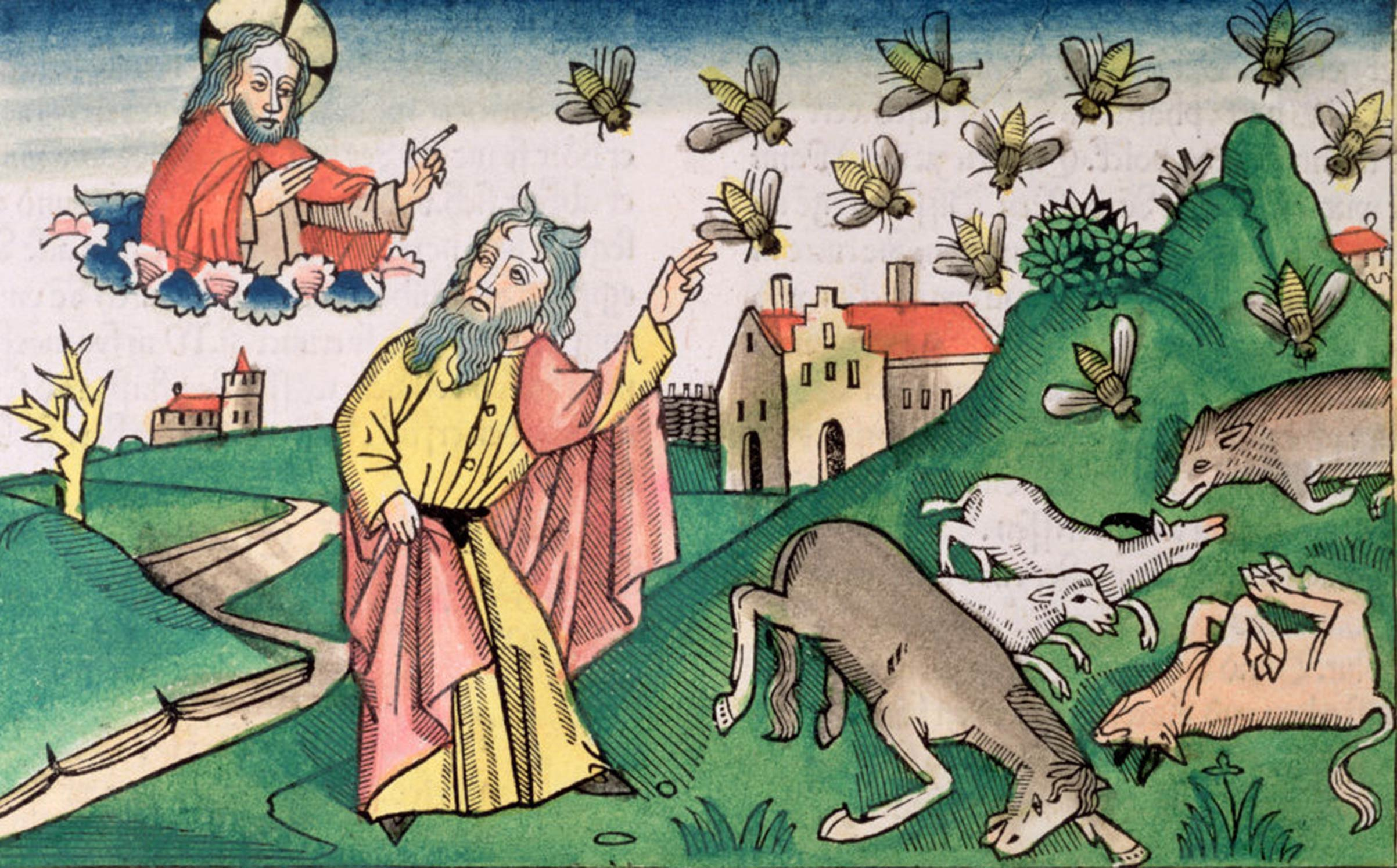 A copy of a 15th century German manuscript depicting the plague of insects.
