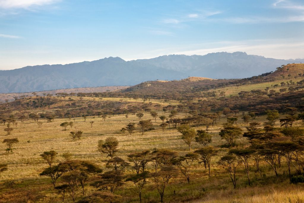 The Crater Area in Queen Elizabeth National Park with a view of the Rwenzori (Ruwenzori) Mountains.