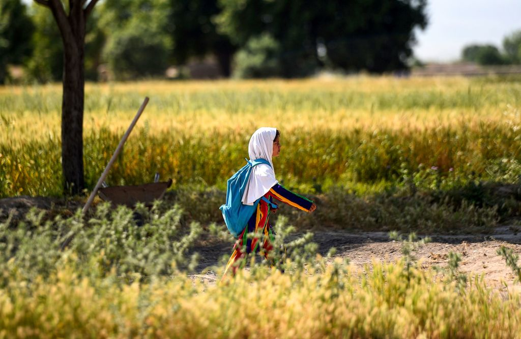 An Afghan girl walks towards her school along a field on the outskirts of Mazar-i-Sharif on May 12, 2019.