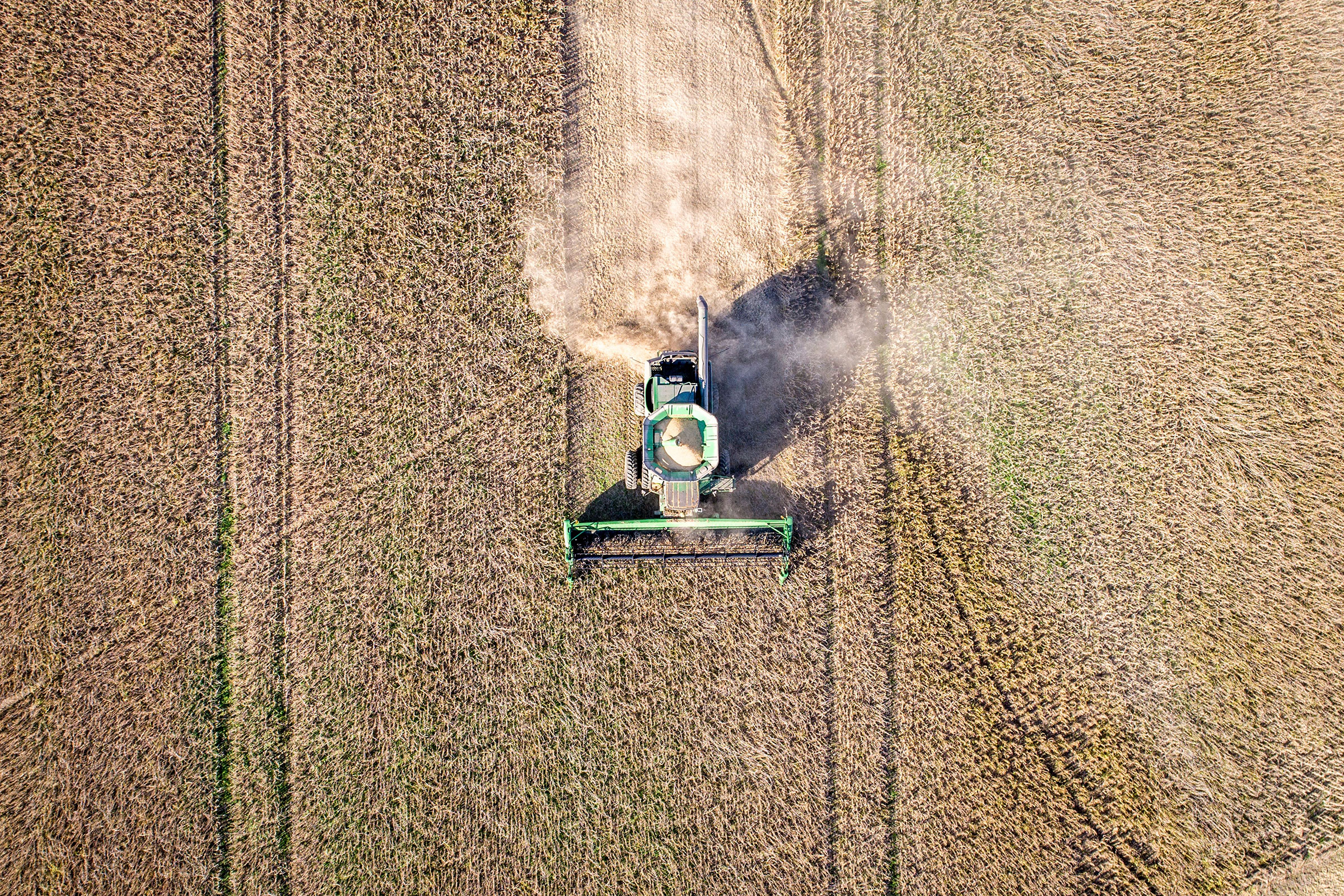 Soybean farms, like this one in Maryland, have been caught up in the U.S.-China trade war