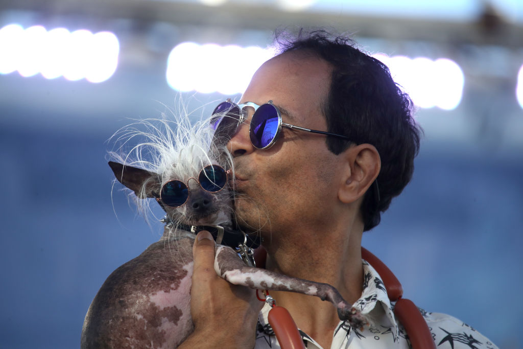 Dane Andrew holds his dog Rascal during the World's Ugliest Dog contest at the Marin-Sonoma County Fair on June 21, 2019 in Petaluma, California. A dog named Scamp the Tramp from Santa Rosa, California won the annual World's Ugliest Dog contest.