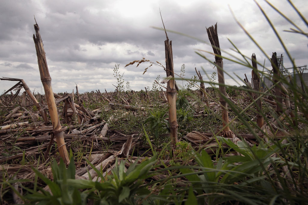 Rain clouds pass over an unplanted farm field on May 29, 2019 near Emden, Illinois. Near-record rainfall in parts of Illinois has caused farmers to delay their Spring corn planting. According to the USDA as of May 26 only 35 percent of the state's corn crop had been planted. By the same date in 2018 farmers in the state had 99 percent of the crop in the ground. As the deadline for planting nears, many farmers may be forced to leave their fields fallow. Illinois ranks number two behind Iowa in U.S. corn production.