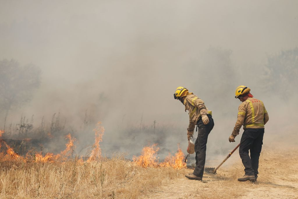 Firefighters try to extinguish a fire near Flix on June 27, 2019 as a forest fire raged out of control in the northeastern region of Catalonia and destroyed at least 4,000 hectares.
