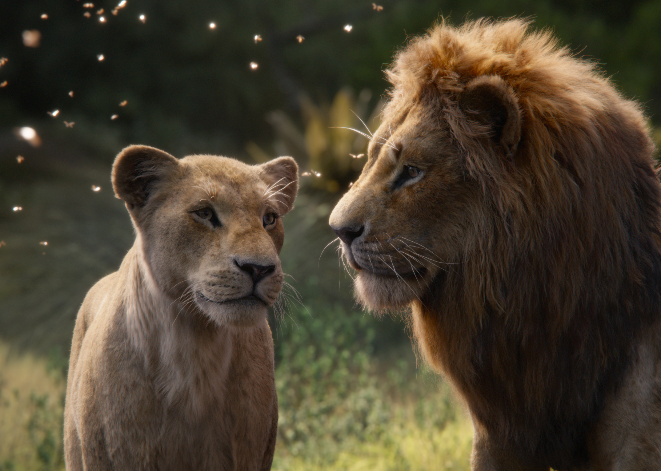 "Featuring the voices of Beyoncé Knowles-Carter as Nala and Donald Glover as Simba, Disney's ""The Lion King"" is directed by Jon Favreau."