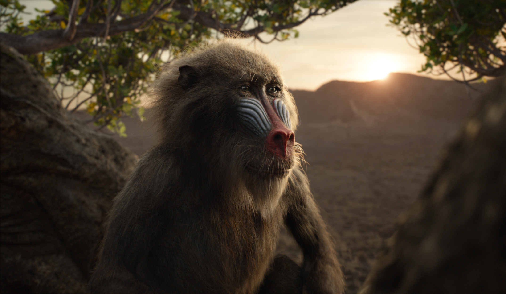 "Featuring the voice of John Kani as Rafiki, Disney's ""The Lion King"" is directed by Jon Favreau."