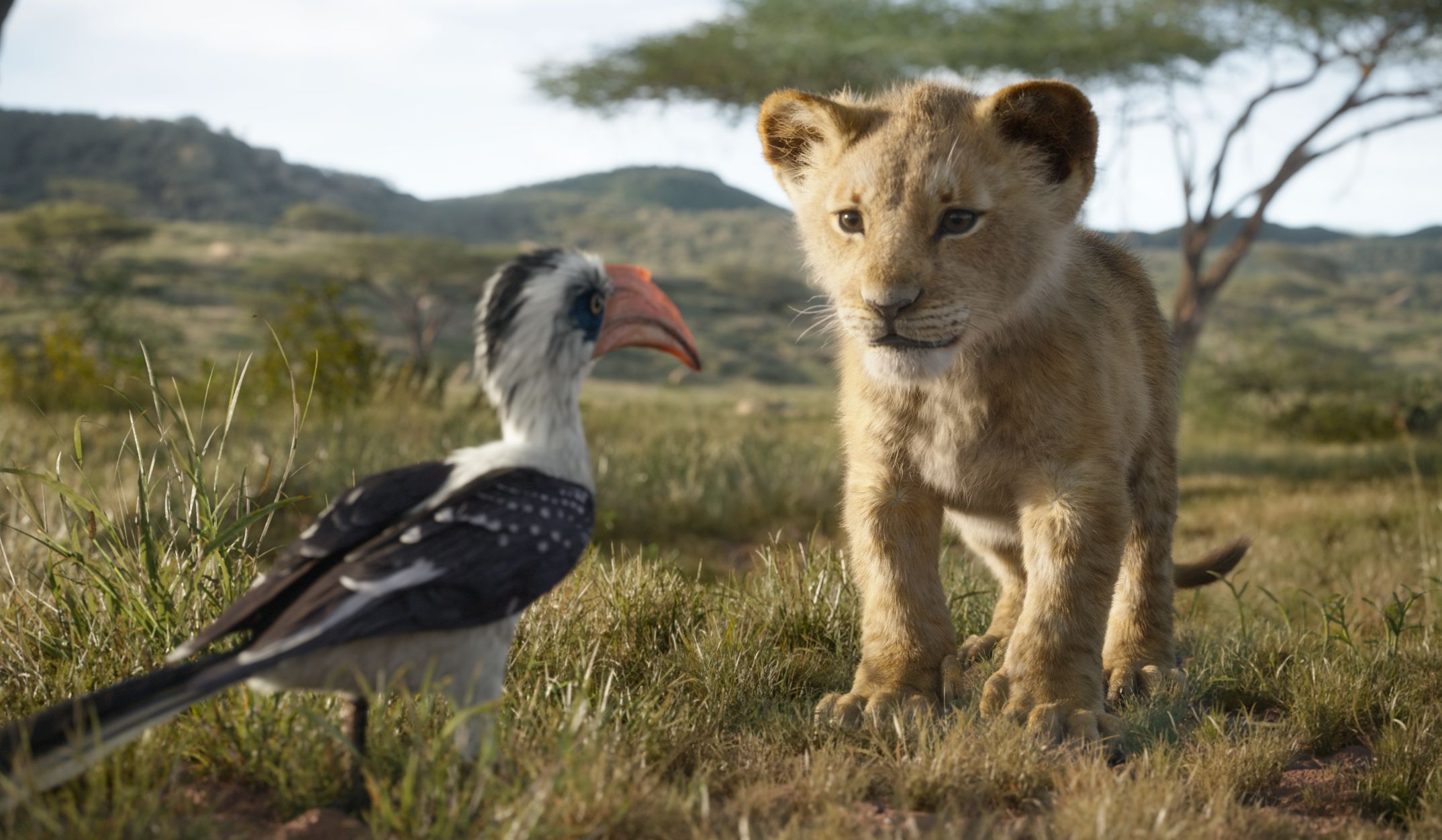 Here S How The New Lion King Differs From The Original Time