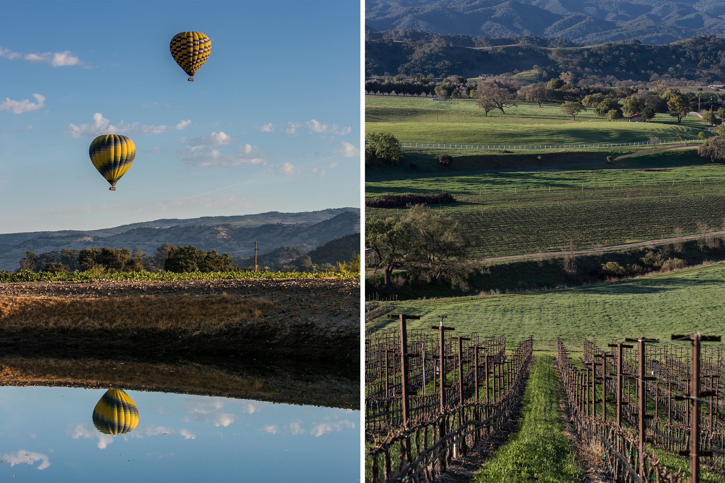 Napa Valley, CA; Santa Ynez Valley, CA