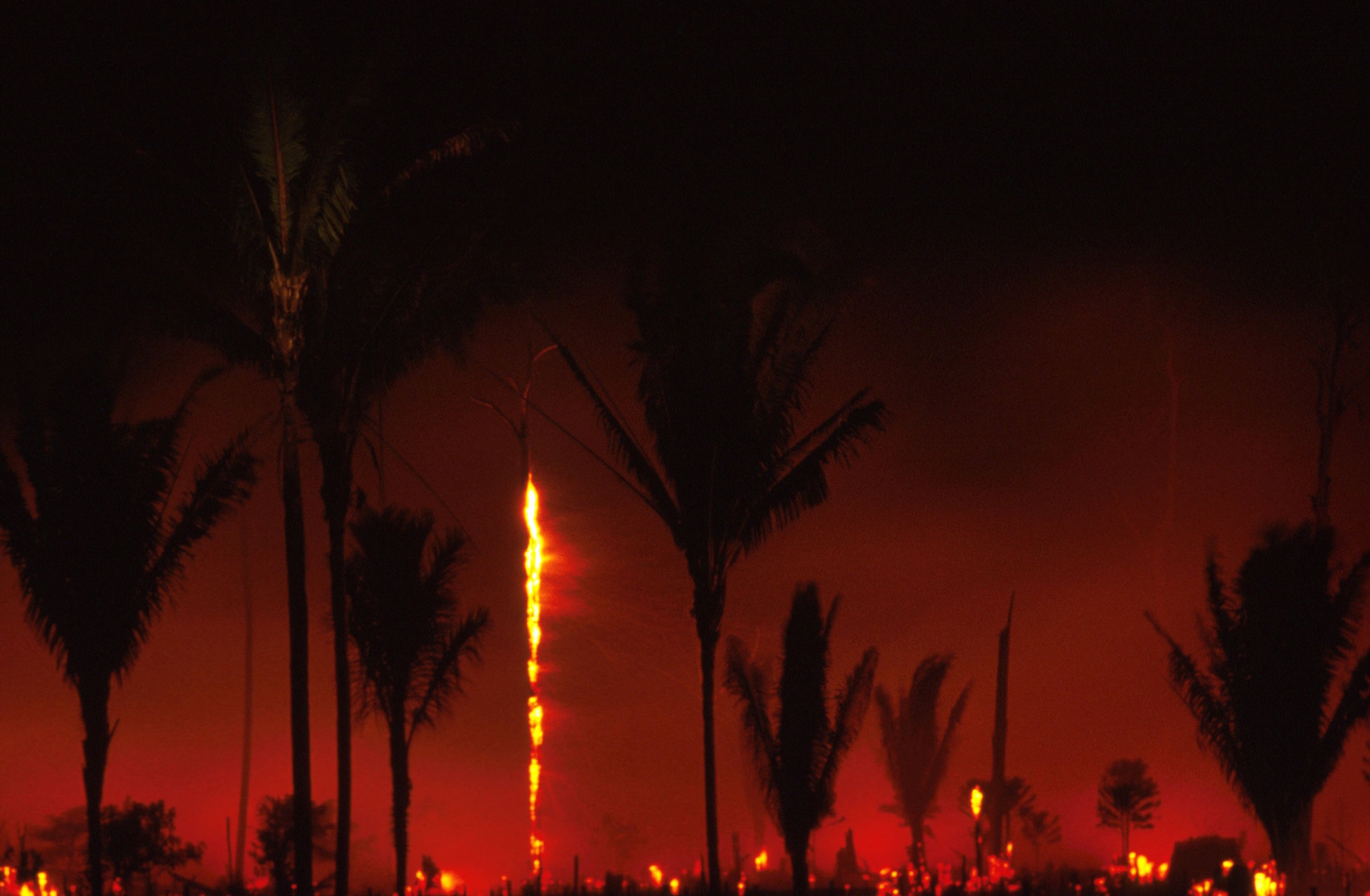 A fire in Amazonia, Brazil, in August, 1989