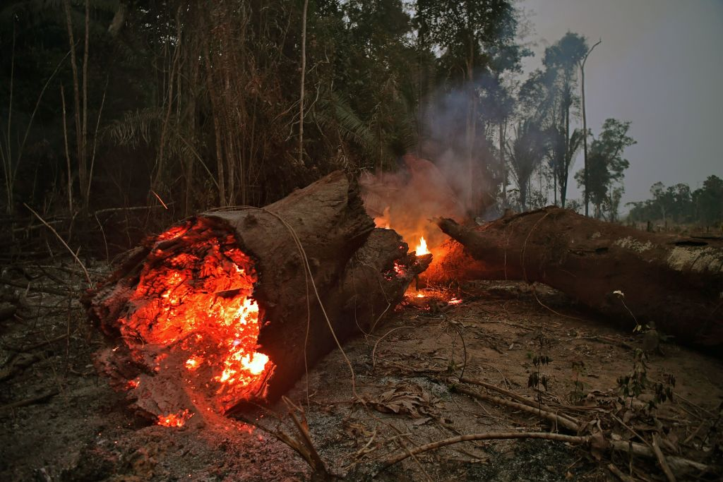 Wildfire in the Amazon rainforest, near Abuna, in the Brazilian state of Rondonia on Aug. 24, 2019.