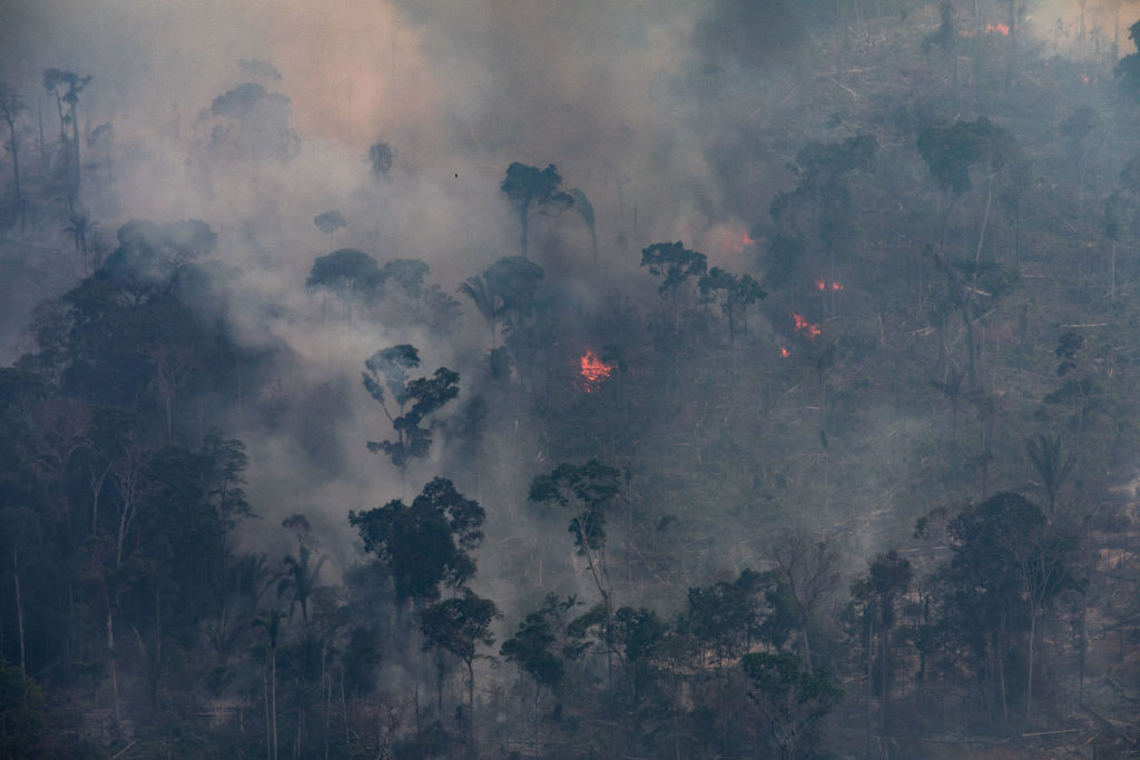 A fire burns in the Amazon rainforest in the Candeias do Jamari region near Porto Velho, Brazil, on Aug. 25, 2019.