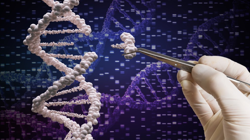 CRISPR Gene Editing Is Being Tested in Human Patients, and the Results Could Revolutionize Health Care
