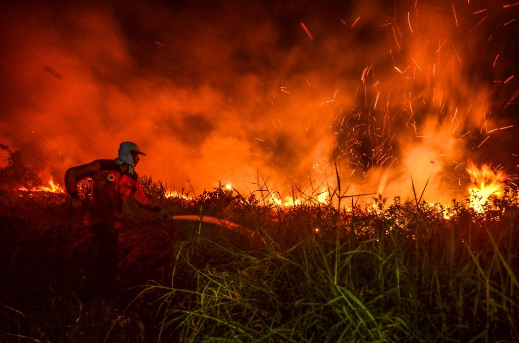 Officials of regional disaster management agency try to douse a peat land forest fire, in Pekanbaru, in Riau province, on July 31, 2019.