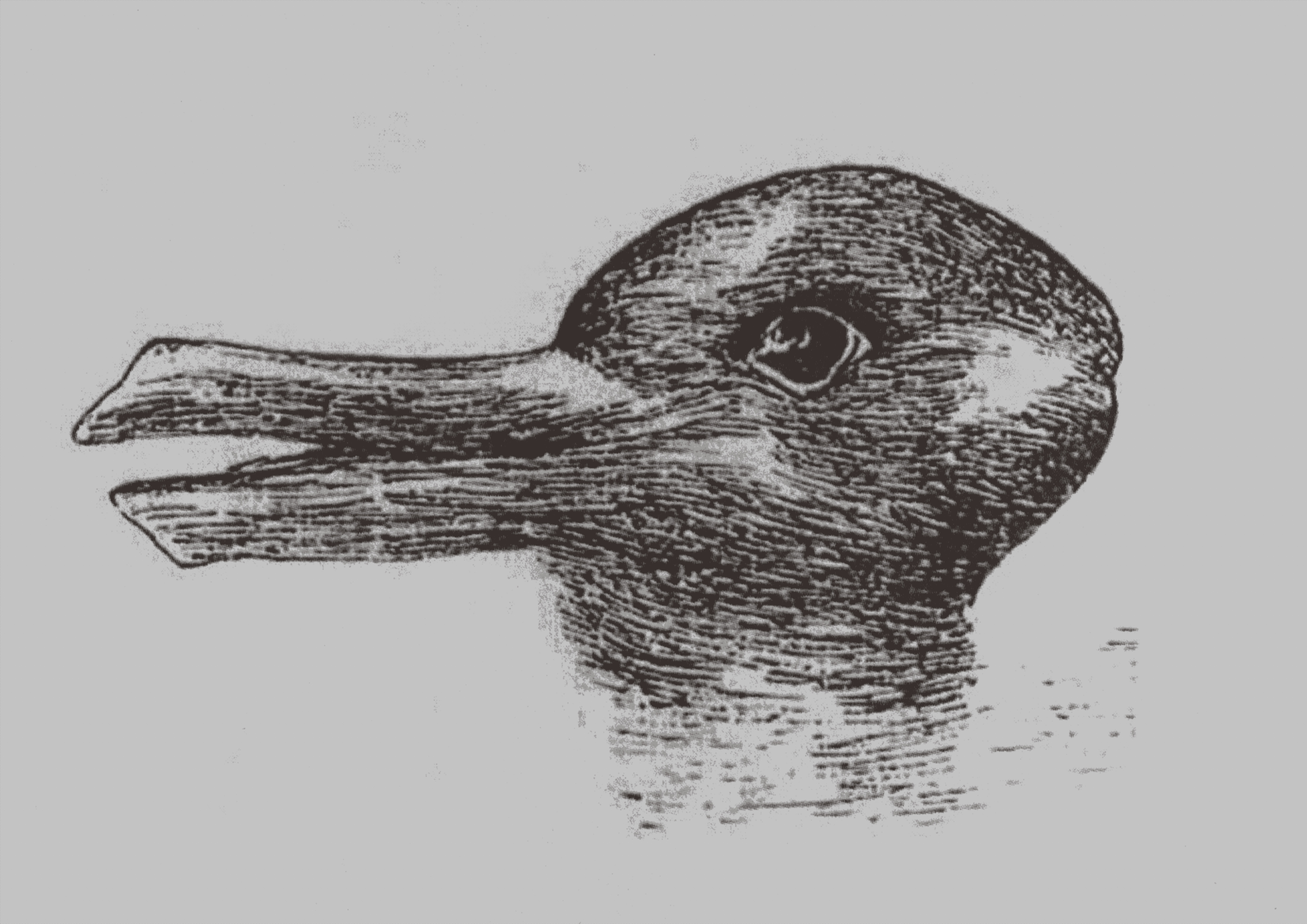 Duck-Rabbit illusion. From: Jastrow, J. The mind's eye. Popular Science Monthly, 1899.