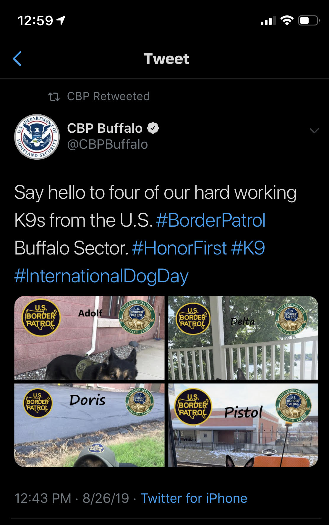 This screenshot taken by Kayla Nelson shows a now-deleted tweet by Customs and Border Protection praising Adolf, one of CBP's top drug dogs in the Buffalo region.