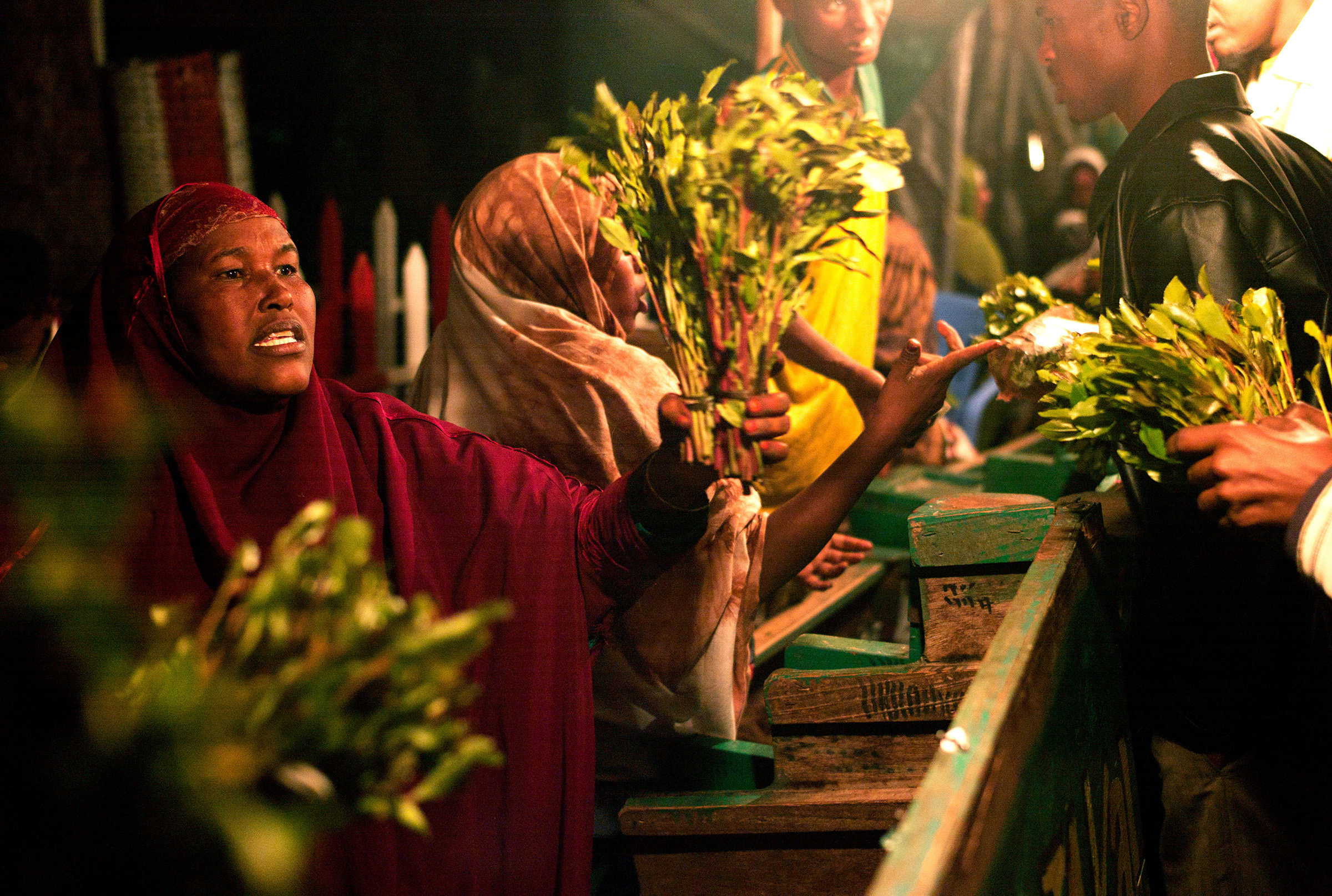 A woman holds a bunch of khat out for sale on her stall in a khat nightmarket in Hargeisa, Somaliland in 2008. The khat is imported by truck from Harar in Ethiopia.