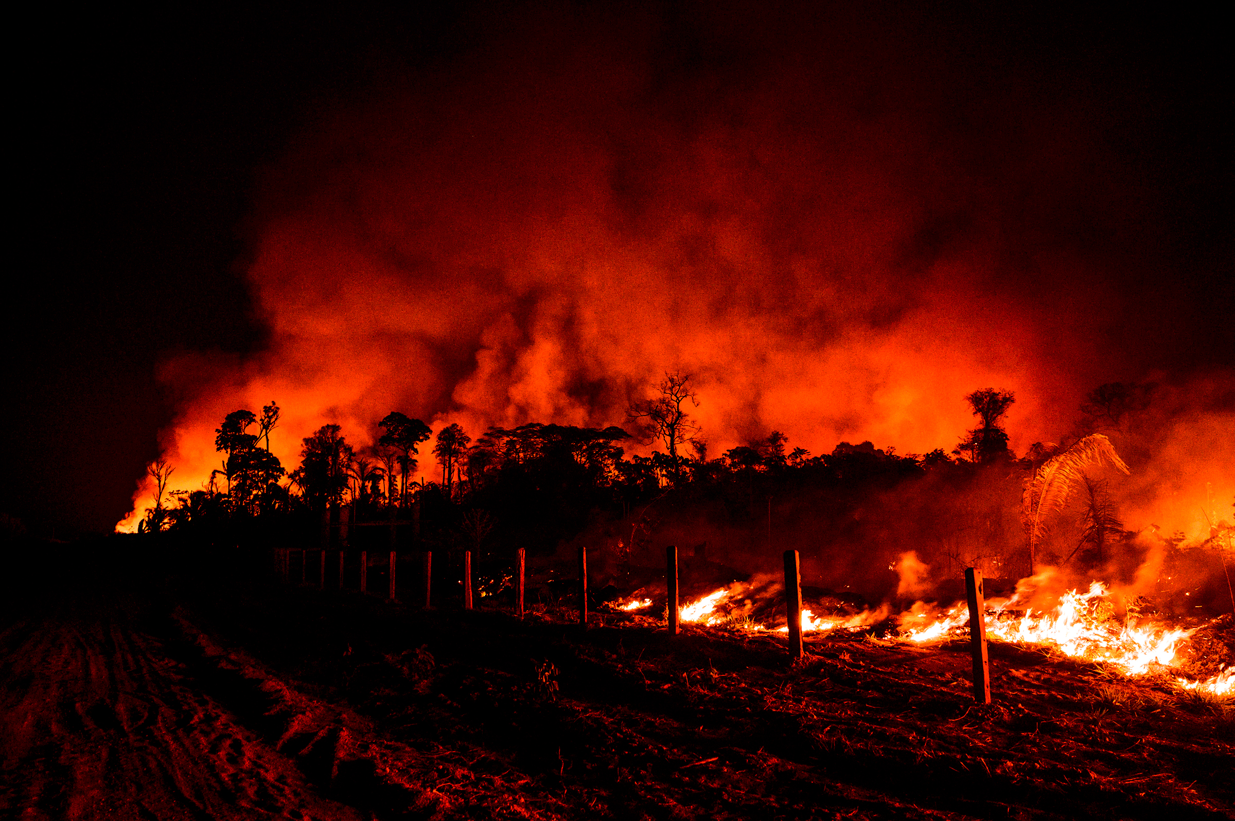 Fence posts are illuminated by nearby flames in the region of Vila Nova Samuel, near Brazil's Jacundá National Forest, on Aug. 27.