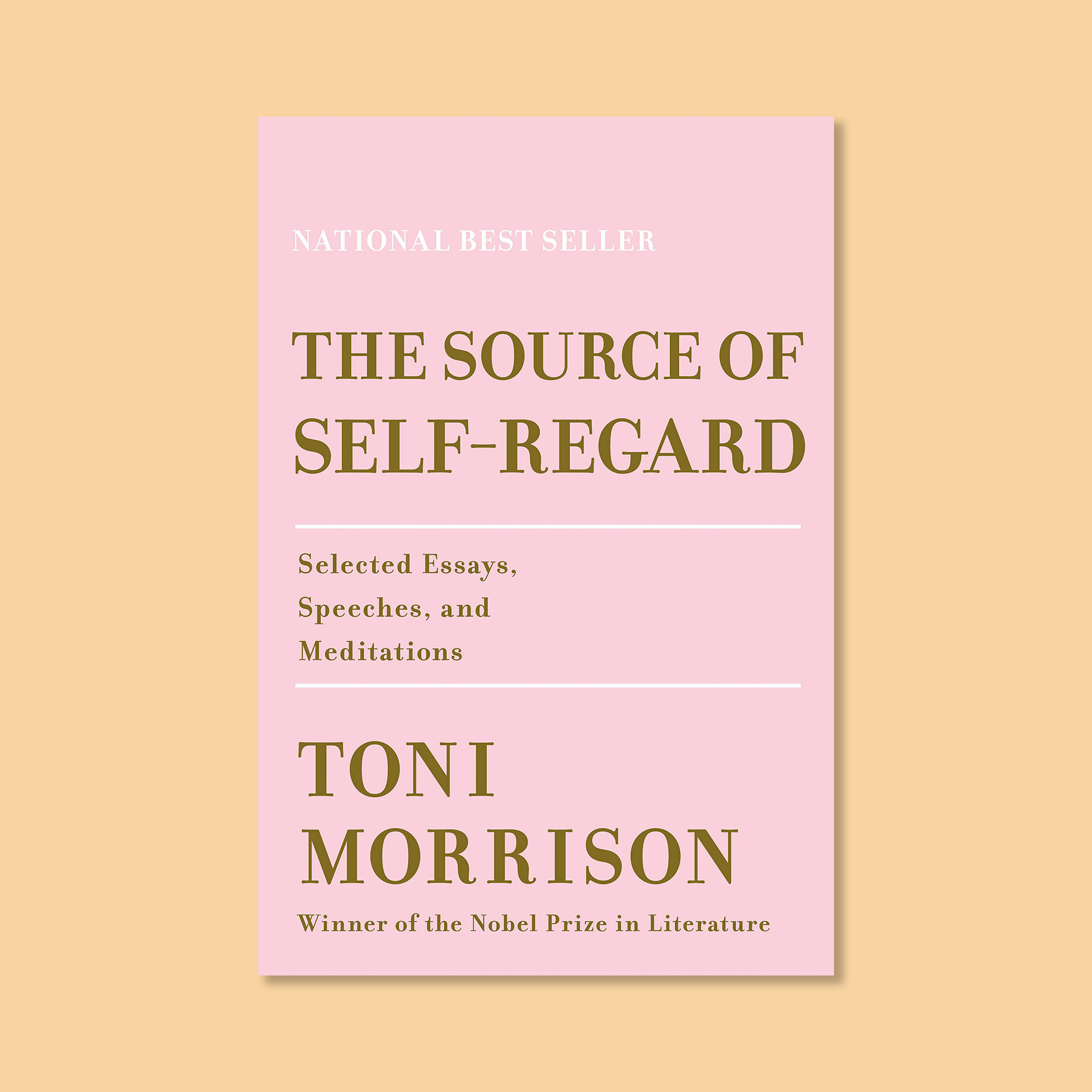 Toni Morrison Books: The Essential Reads to Start With | Time