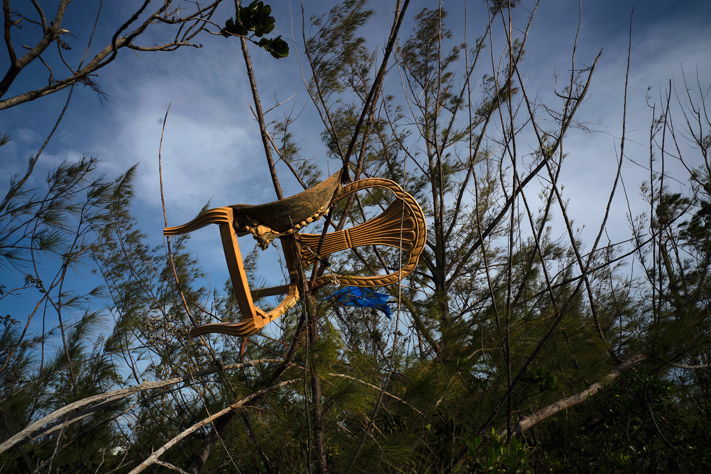 A chair is caught in a grove, blown there by Hurricane Dorian's powerful winds, in Pine Bay, near Freeport, Bahamas, Wednesday, Sept. 4, 2019.