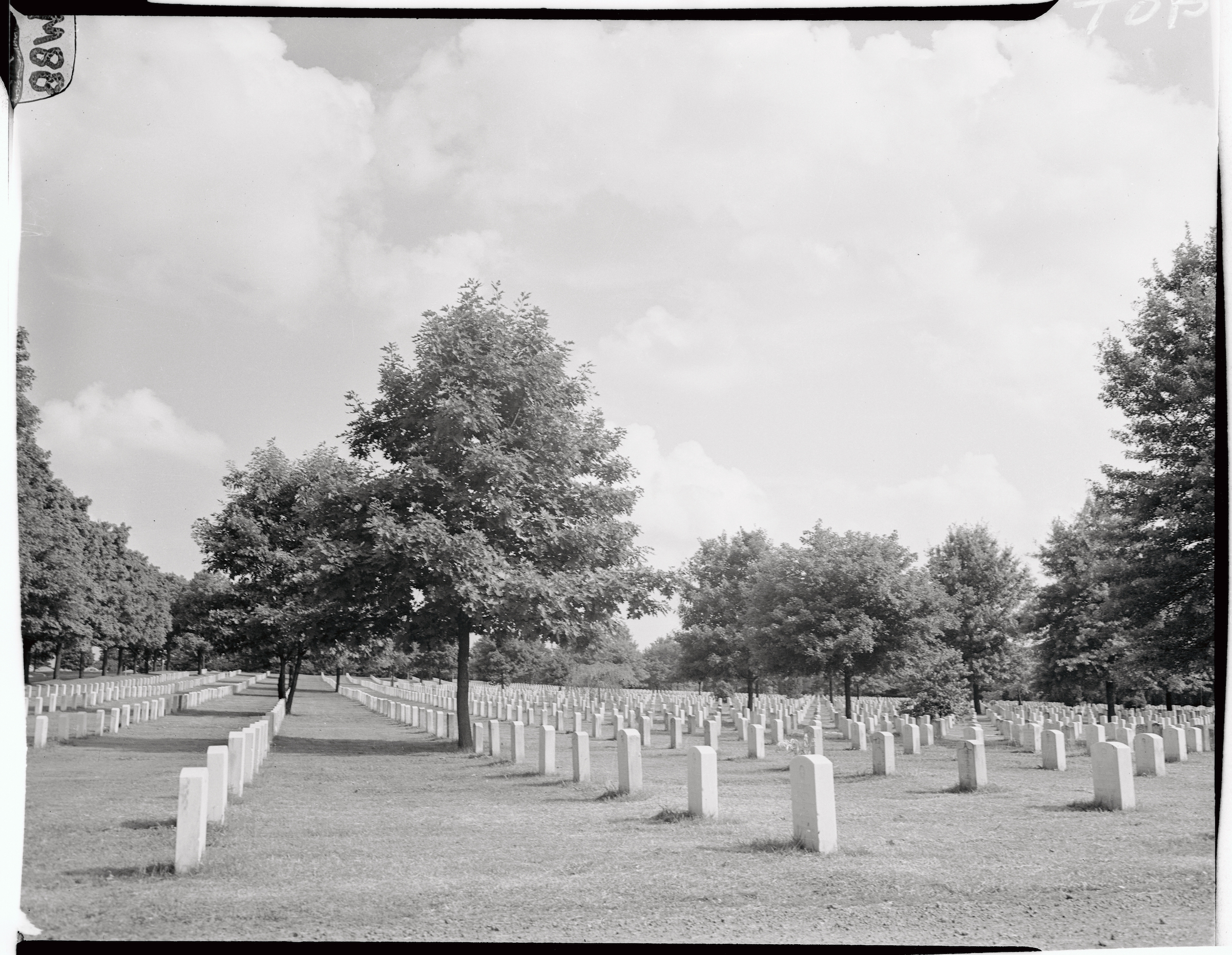 View of Arlington Cemetery in 1946