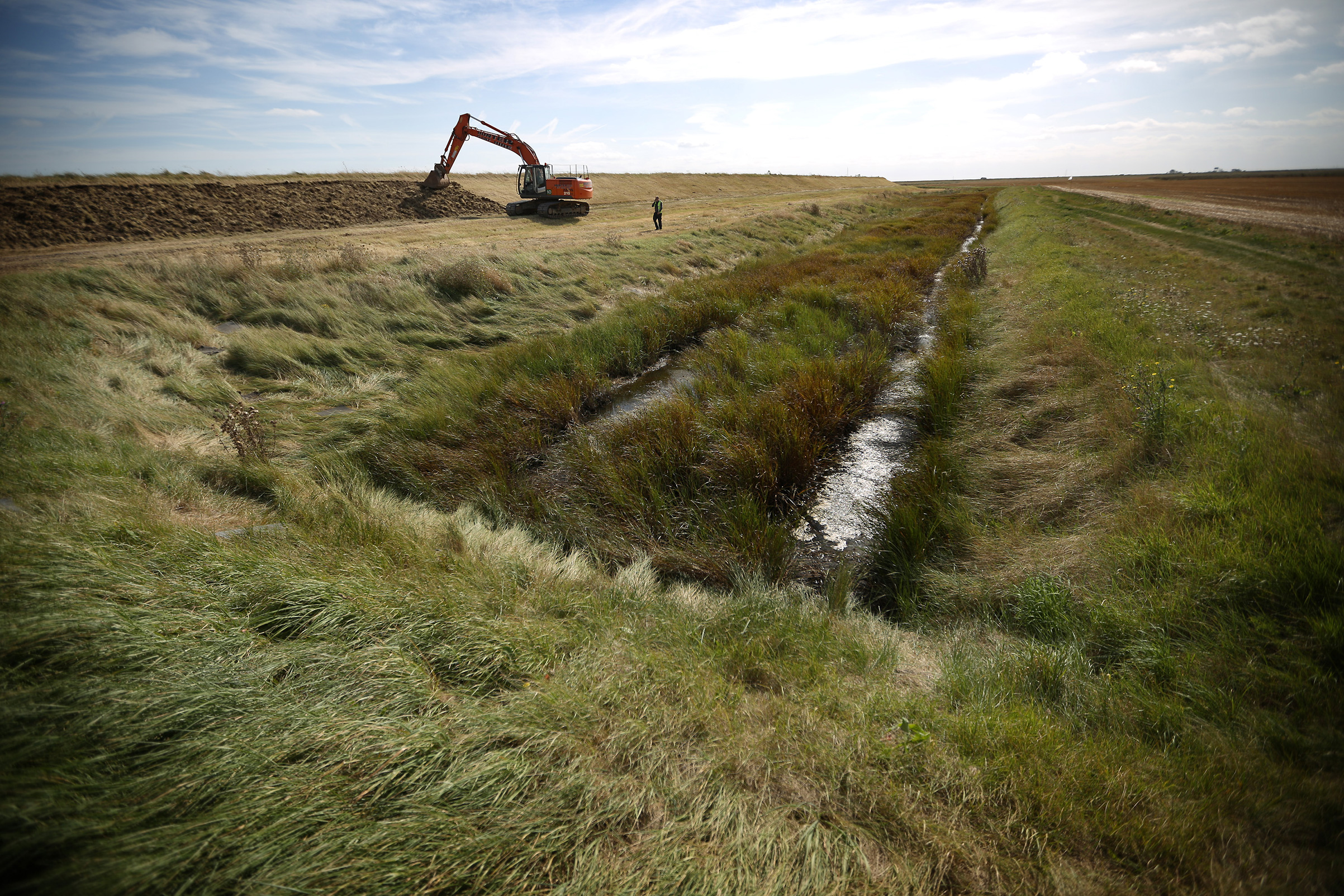 A project to build a network of salt marshes, grasslands and lagoons on Wallasea Island on England's eastern coast is due for completion in October