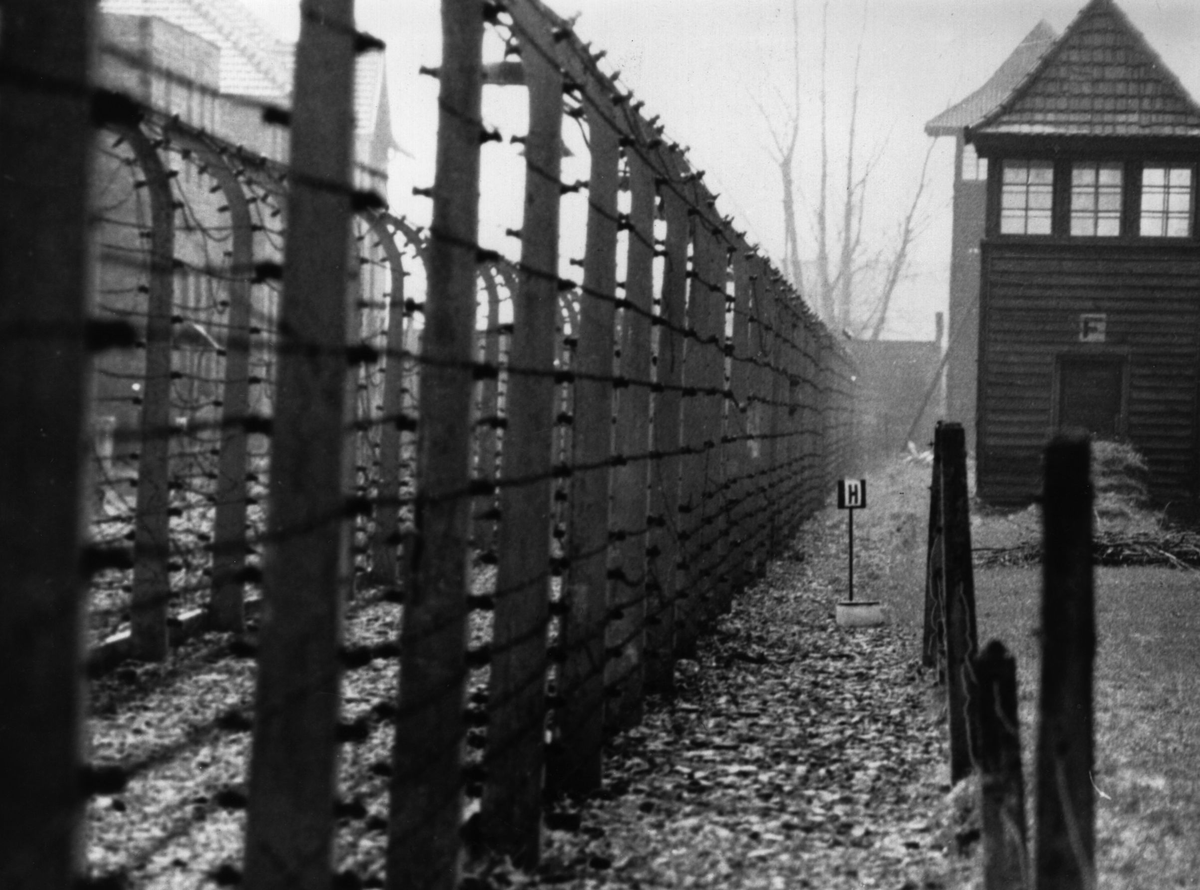 circa 1955:  The perimeter fence of the Nazi concentration camp at Auschwitz.