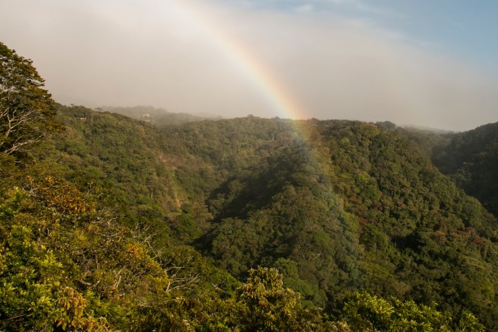 Rainbow on top of the Children's Eternal Rainforest in Costa Rica.
