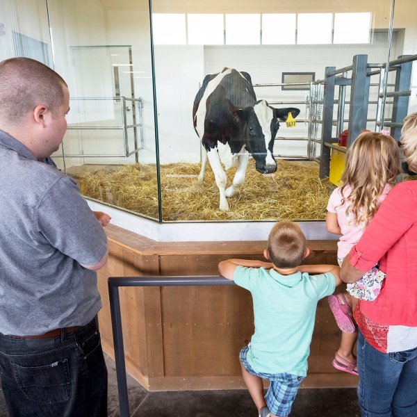 farm-wisconsin-discovery-center-manitowoc