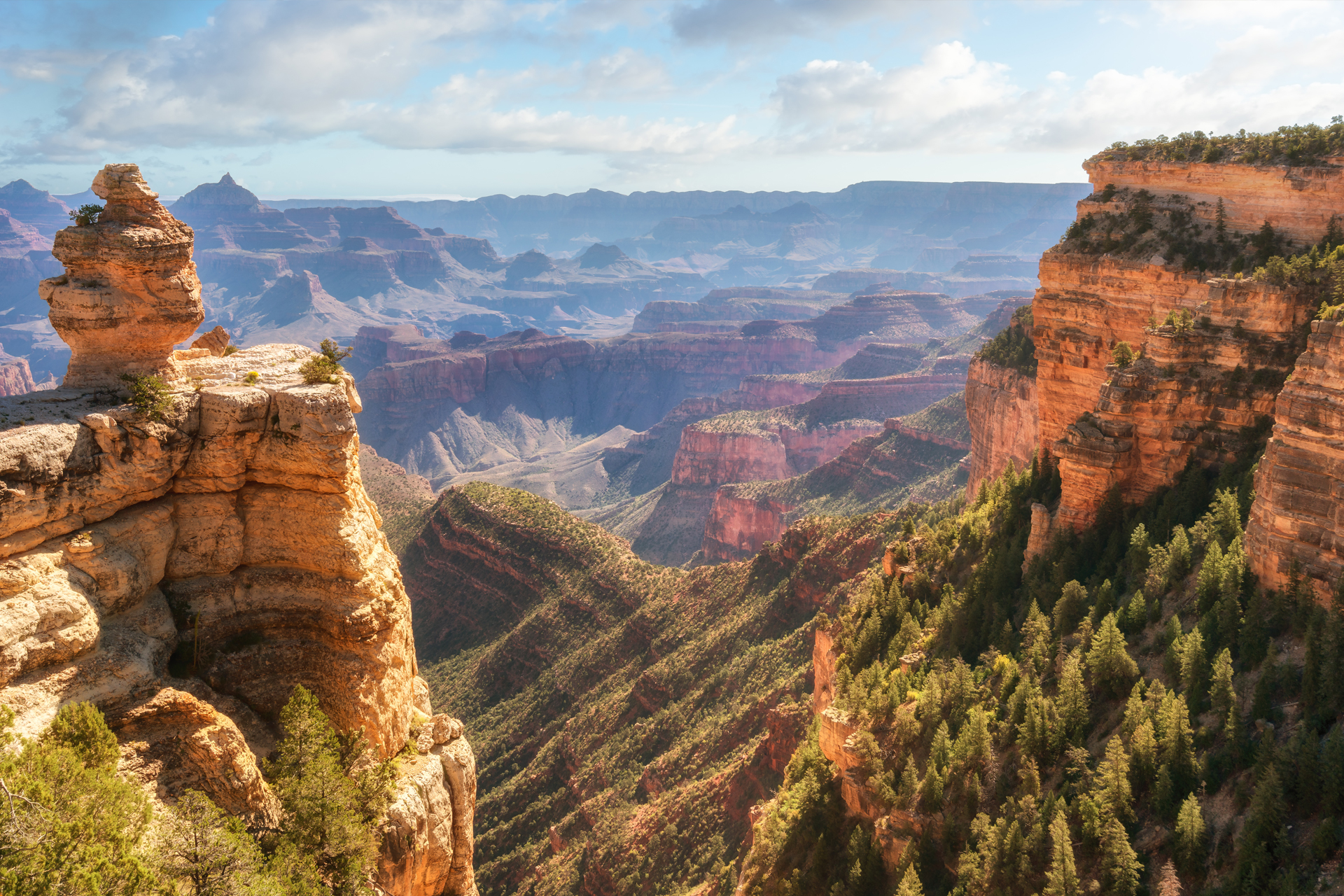 The Grand Canyon: World's Coolest Places of 2019