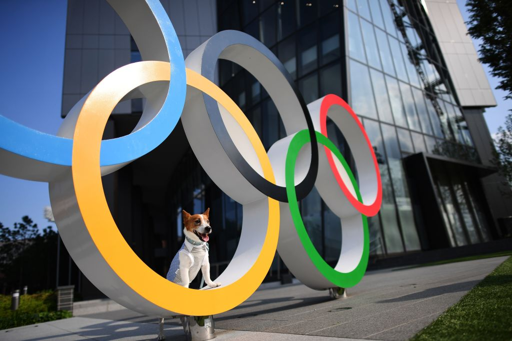 A dog is pictured on the Olympic Rings displayed at the Japan Sport Olympic Square beside the new National Stadium, still under construction, in Tokyo on July 24, 2019.