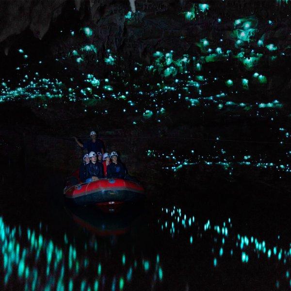 waitomo-glowworm-caves-new-zealand