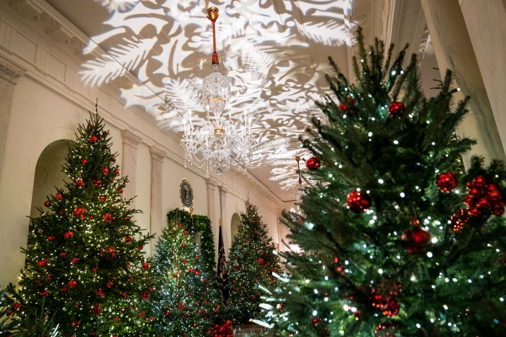 Christmas Trees line the hall during the White House Christmas preview in the Cross Hall of the White House on Monday, Nov. 26, 2018 in Washington, DC. (Photo by Jabin Botsford/The Washington Post via Getty Images)