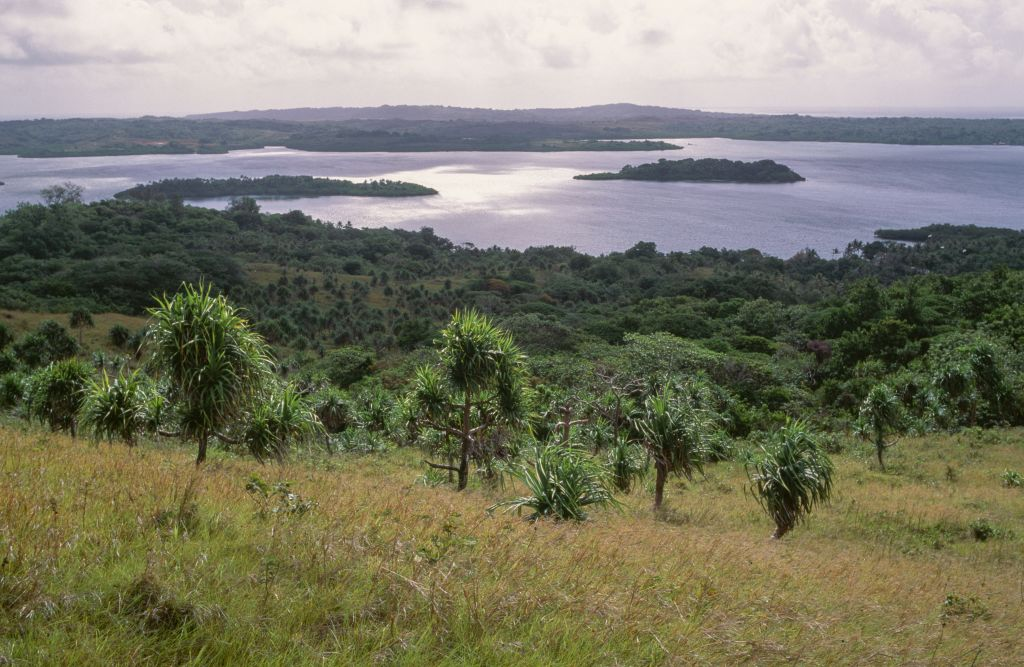 View of the lagoon from Mount Matade, with pandanus trees (Pandanus Parkinson), Yap Island, Micronesia.