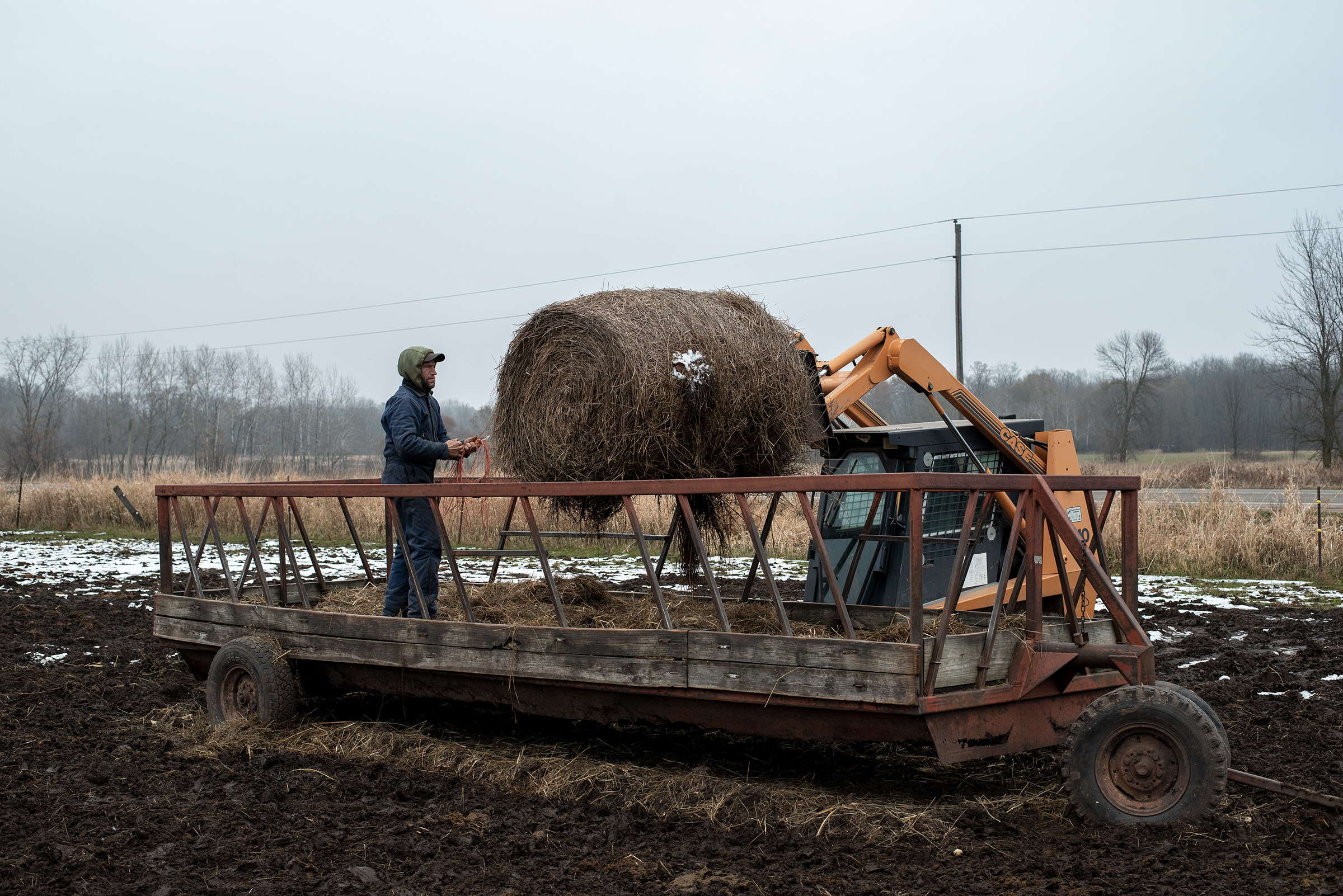 Steven Rieckmann loading a bale of hay on Nov. 20, 2019.