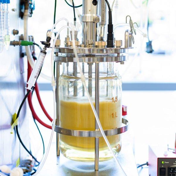 genomatica-bio-nylon