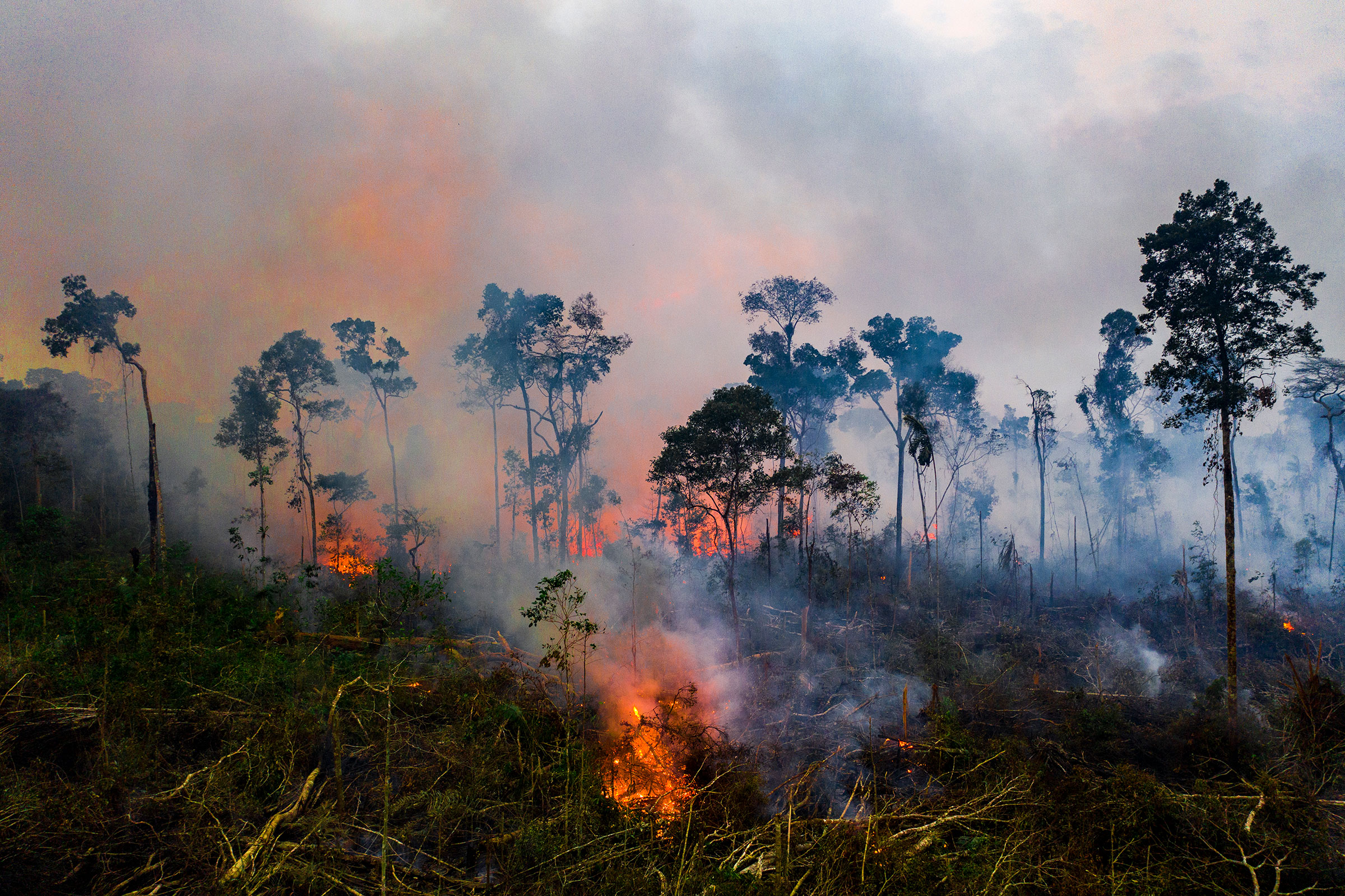 A fire near the Jacundá National Forest in Brazil's Amazon in August