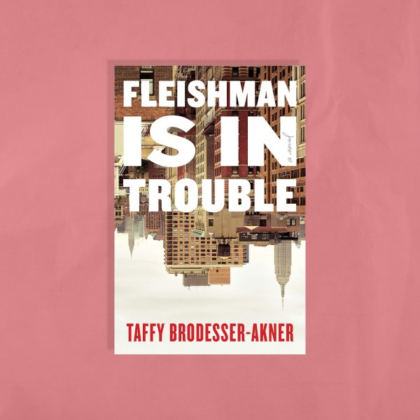 fleishman-is-in-trouble