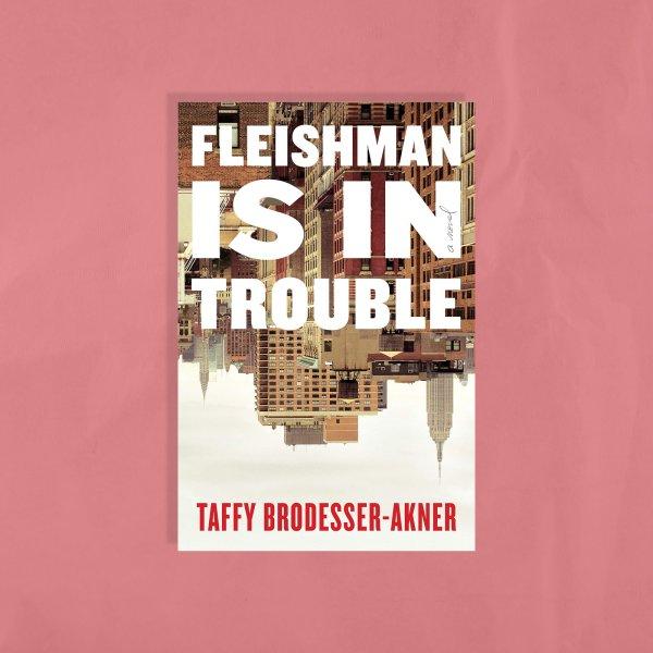 fleishman-is-in-trouble