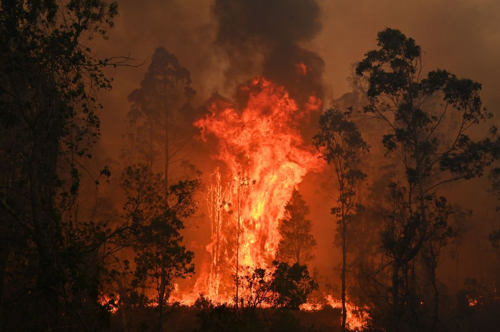 A fire rages in Bobin, 350km north of Sydney on Nov. 9, as firefighters try to contain dozens of out-of-control blazes that are raging in the state of New South Wales.