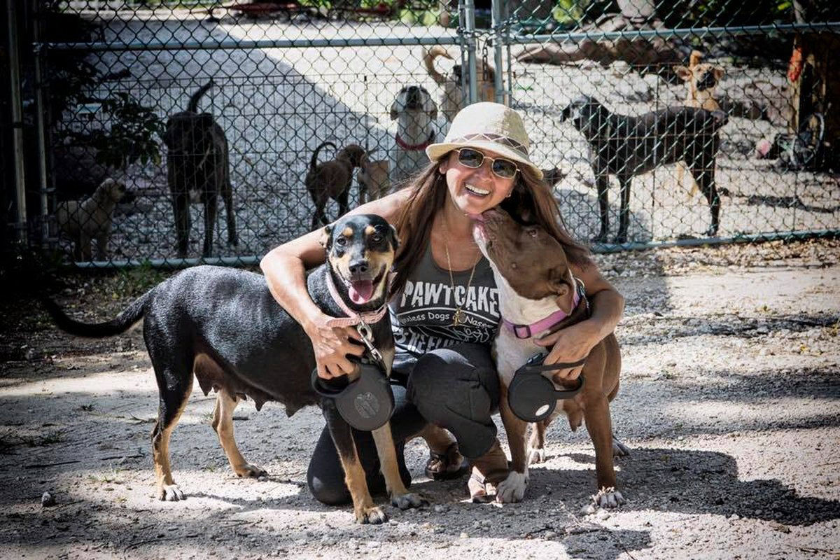 Chella Phillips has run Pawtcake Refuge in Nassau since 2015