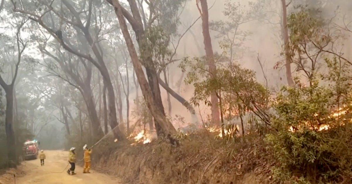 Части Австралии испытывают праздничное облегчение от смертельных лесных пожаров thumbnail
