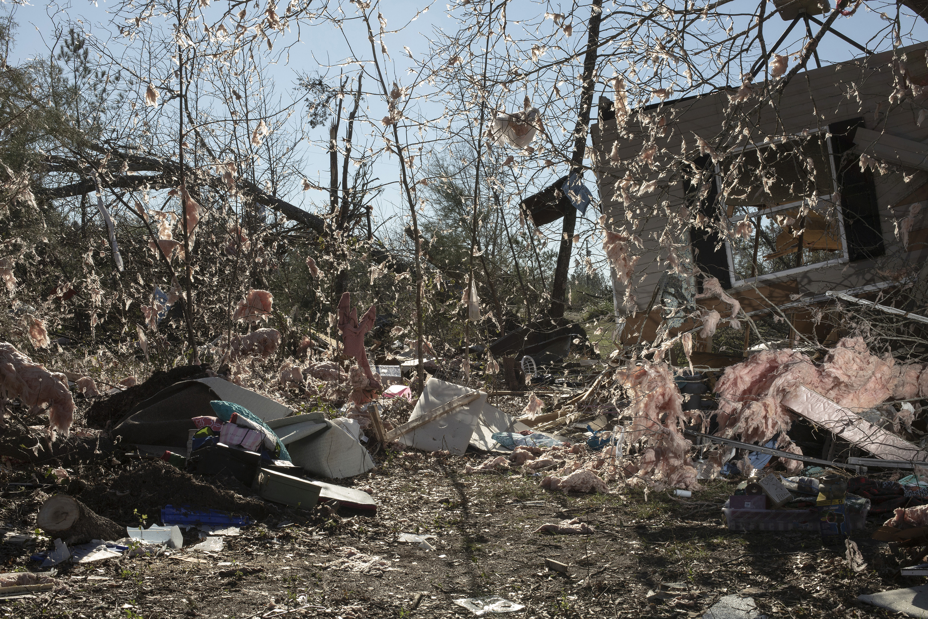 Insulation from a home was scattered in the trees after a tornado passed through the area, killing 23 people and destroying homes, in Beauregard, Ala., on March 4.